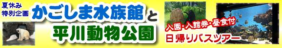 夏休み特別企画!『かごしま水族館と平川動物公園』日帰りバスツアー