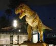 恐竜勝山&化石発掘体験