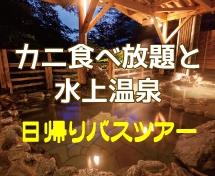 カニ食べ放題と秋の味覚ぶどう狩り&水上温泉入浴