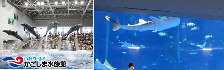 kagoshima_aqua2.jpg