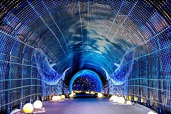 tunnel340.jpg