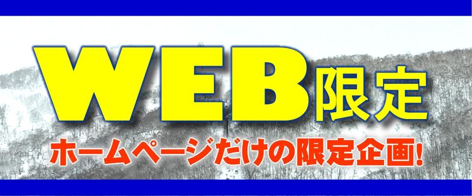 WEB限定プラン