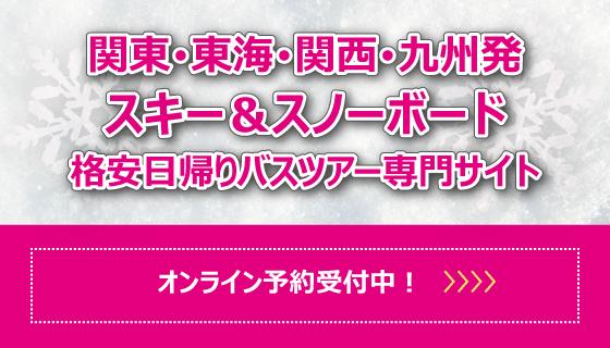 日帰りスキーサイト 好評販売中!!