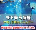 美ら海号|沖縄1日観光バスツアー