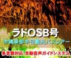 OSB号|午前発南部半日観光バスツアー