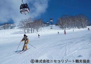 福岡発北海道 全日空で行く札幌 札幌市内ホテル利用/中日スキー場までのシャトルバス1回付