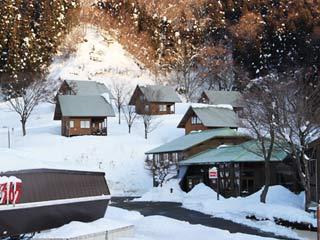 朝後発便 【今庄365スキー場】 ロッジ365(食事なし)/リフト滞在中付(1日券×2枚)