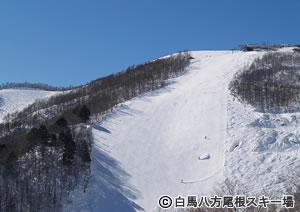 福岡発 FDAで行く・清美山荘/白馬バレーリフト券(10スキー場共通券)付