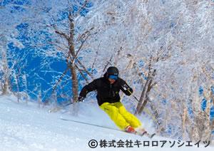 福岡発北海道 全日空で行く・キロロ TRIBUTE -PORTFOLIO-/フリープラン