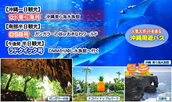美ら海水族館へ行く「日帰りバスツアー」