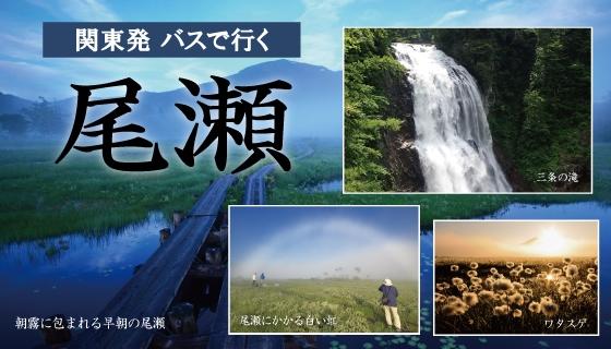 関東発日帰りバスプラン『尾瀬ハイキング』! 好評★運行中!
