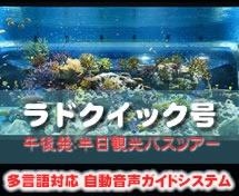 【午後・那覇発】ラドクイック号半日観光DMMかりゆし水族館へ行く