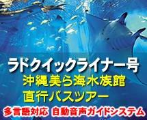 【那覇空港発】ラドクイックライナー号『沖縄美ら海水族館』直行バスツアー
