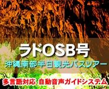 【午前・那覇発】OSB号南部半日観光ガンガラーの谷orおきなわワールド