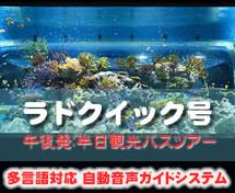 【午後・那覇発】ラドクイック号DMMかりゆし水族館半日観光