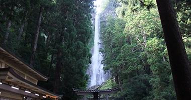 世界遺産の聖地・熊野三山巡り日帰りバスツアー
