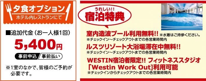 ★プライスダウン北海道・第2弾★<br>ルスツリゾートホテル<br>ウェスティン ルスツリゾート特典画像